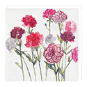 Card Carnations