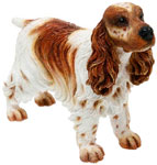 Cocker Spaniel Brown