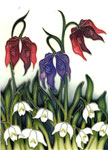 Moorcroft Cards Alpine Meadow