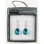 Blue Crystal Teardrop Earrings