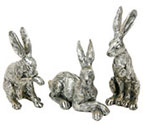 Champagne Bronze Hares